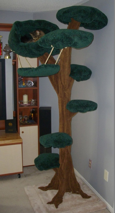 escarpment pet retreat is pleased to offer cat trees for sale  click on any photo to enlarge it  u2013 a details list can be found at the bottom of this page  cat tree designs  u0026 price list   escarpment pet retreat  rh   escarpmentpetretreat ca
